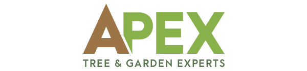 https://www.hubsitebuilder.com.au/wp-content/uploads/custom-logo-design-apex-tree-and-garden-experts.png